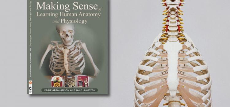eHealthLearning | Making Sense of Learning Anatomy and Physiology